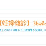 【妊婦健診】36w0d*初めてのNST&浮腫みと子宮頸管の指摘(O_O)!