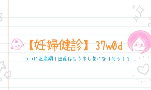 【妊婦健診】37w0d*ついに正産期!出産はもう少し先になりそう!?
